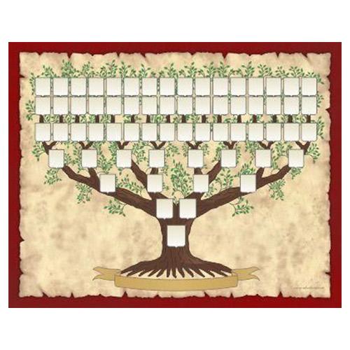 arbol-genealogico-slide-1